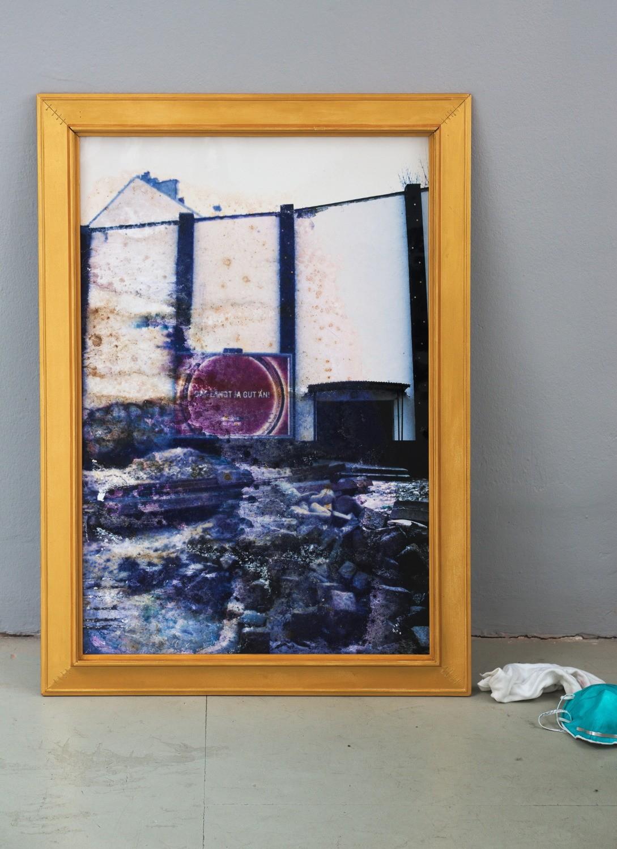 Martin Horsky – Das fängt ja gut an! / Fotografie, Rahmen, Schimmelkulturen, 85 x 91 cm, 2002–2016