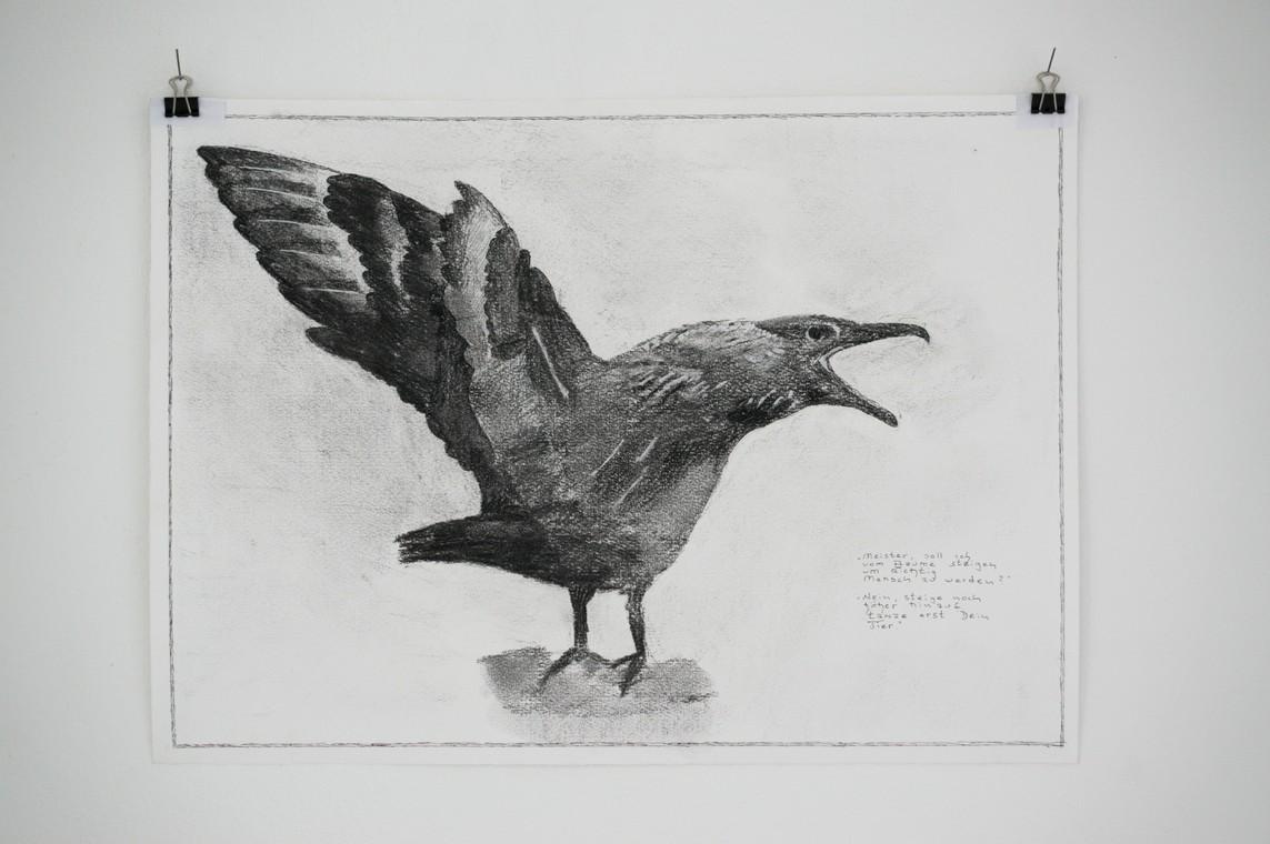 Kirti Ingerfurth: »Rabe« Kohle auf Papier, 30 x 42 cm