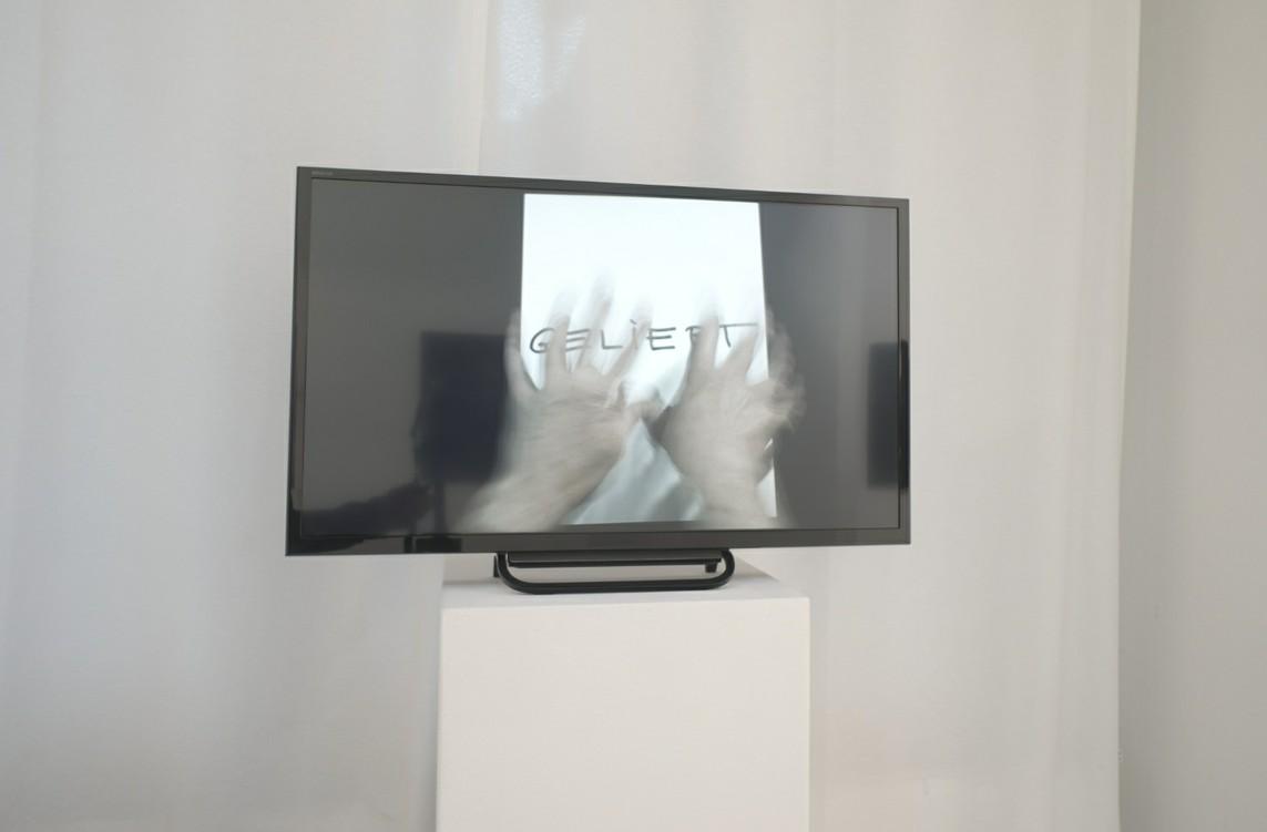 "»LEBENSLÄUFE« 2014, Full HD Video auf DVD, 5'35"""