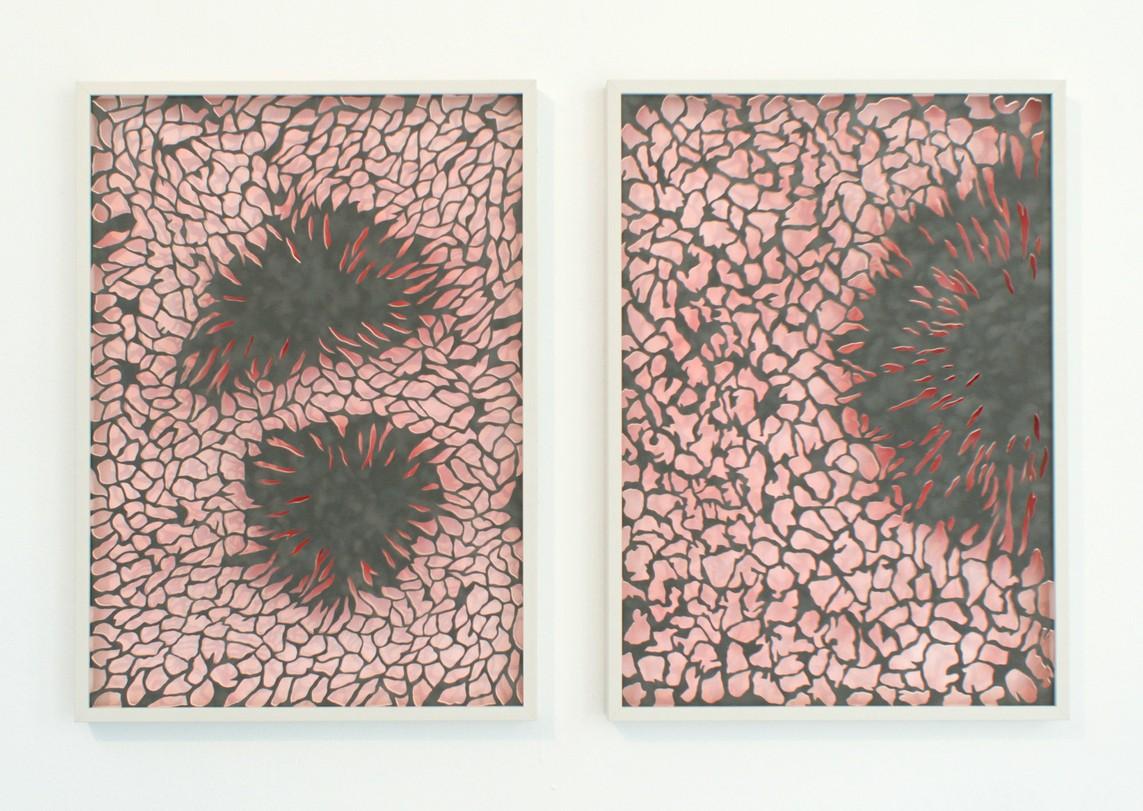 »Transluzenz« Papierschnitt, 2017, je 70 x 50 cm