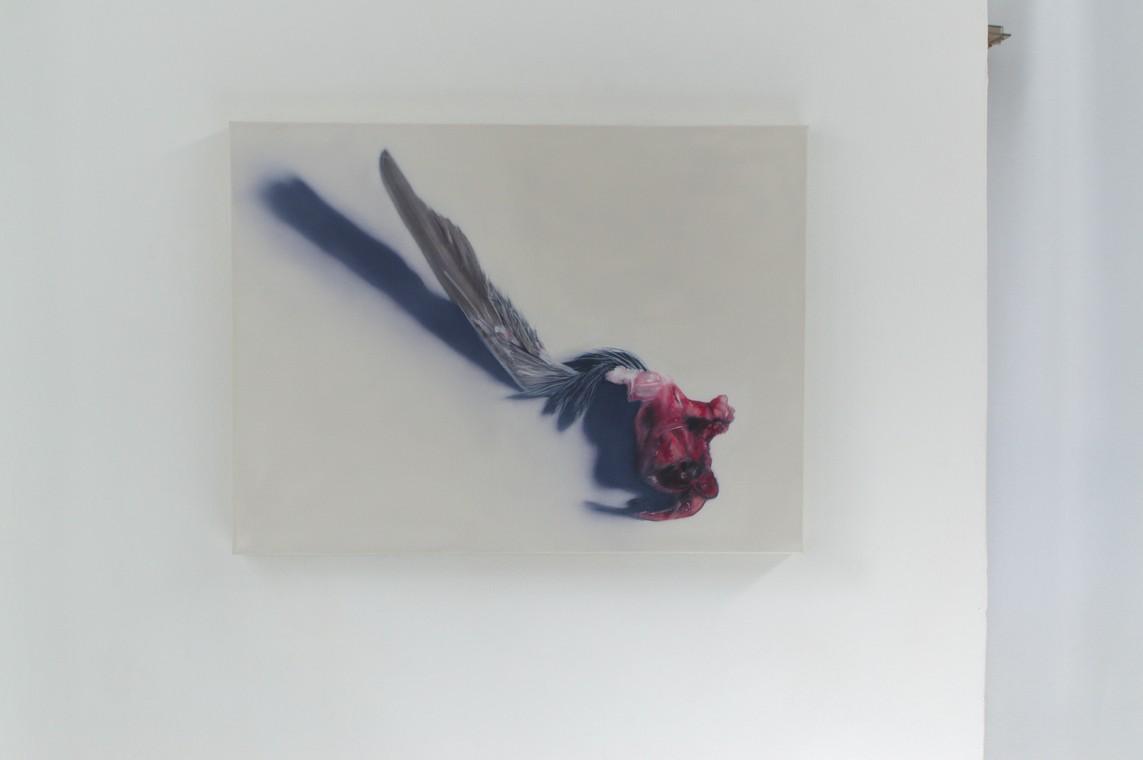 »Flügel« Öl auf Leinwand, 60 x 80 cm, 2016