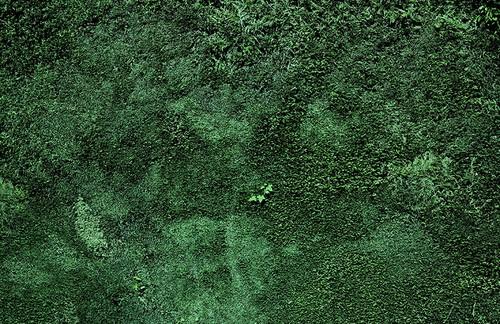 FRONTIER ZONES (2013 – 2014) | Pigmentprint auf Harman-Matt Cotton (Hahnemühle), 130 x 200 cm